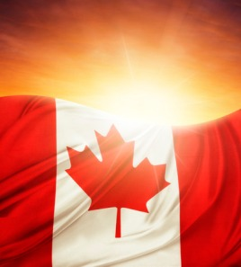 30930928 - canadian flag in front of bright sky